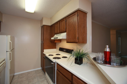 Colony Woods Apartments, Birmingham, AL - Kitchen 2